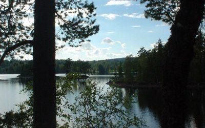 Het meer in de zomer